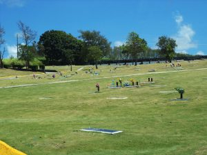 Ground Burial Lots